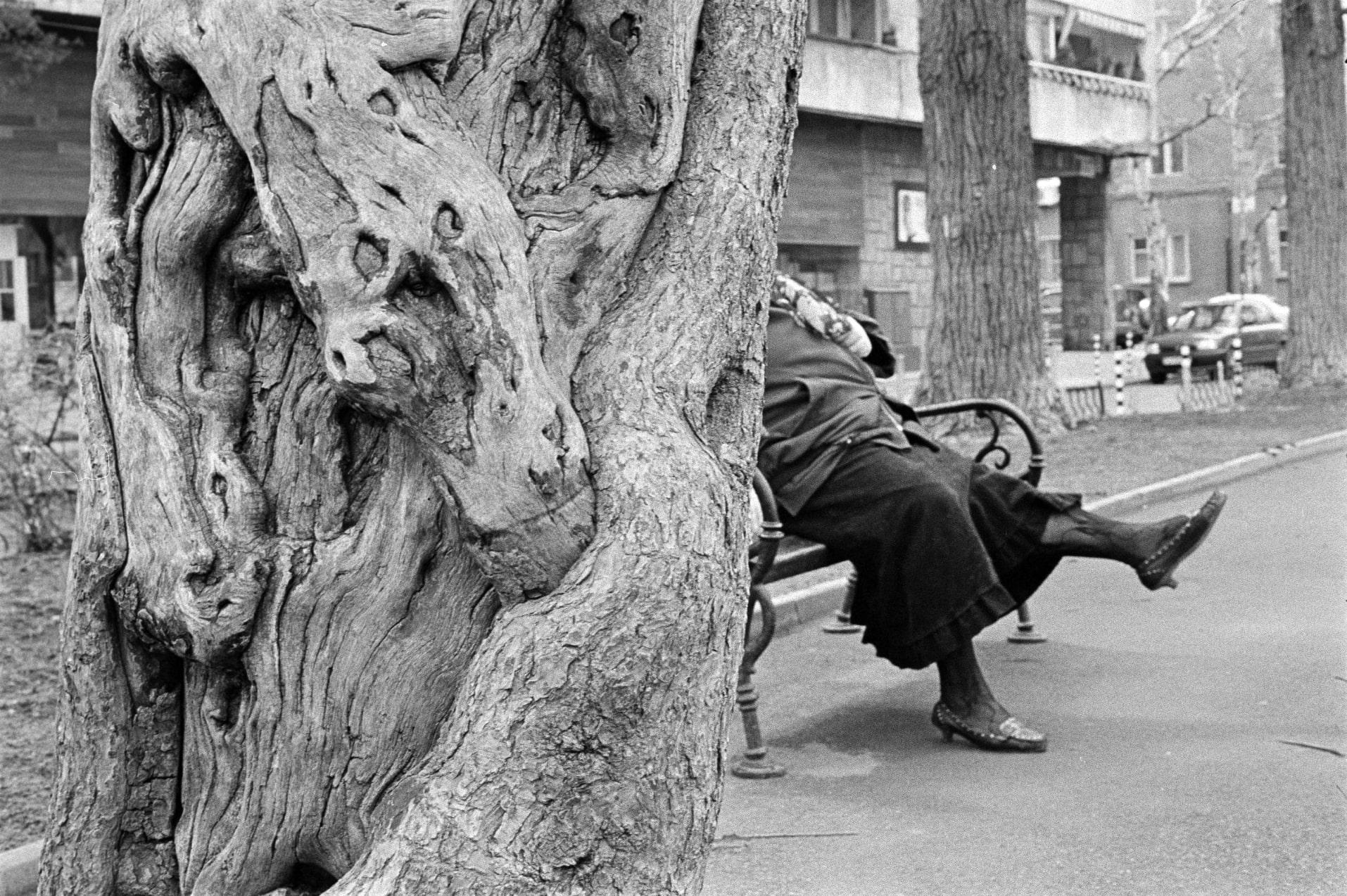Черно-бяла фотография на Николай Трейман
